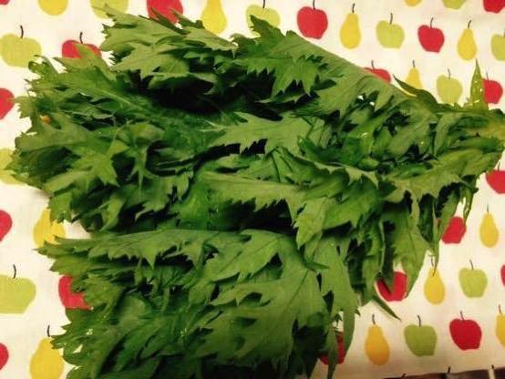今日のパスタレシピはわさび菜(愛彩菜)と納豆の和風パスタ!