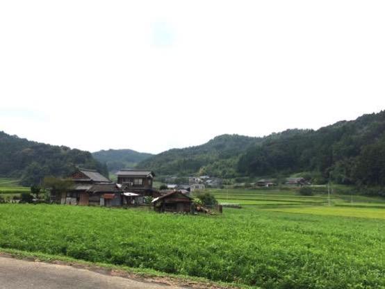 イモリ谷 ぱおぱお 場所IMG 4601