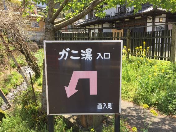 長湯温泉 家族風呂 おすすめ  6363