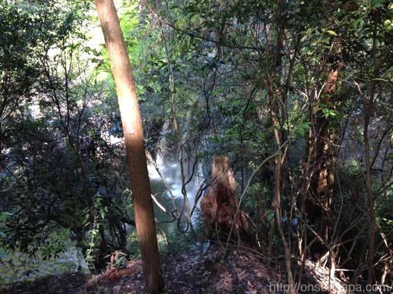 熊本 滝 小国 鍋ヶ滝 IMG 4813