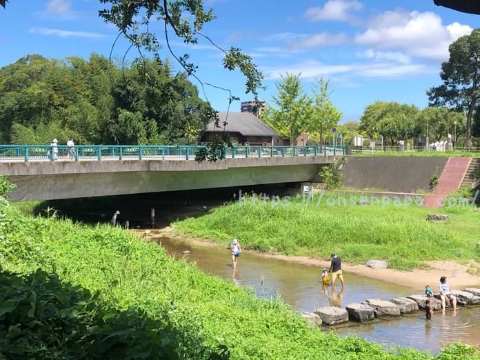 七瀬川自然公園 3歳 子連れ  IMG 5073