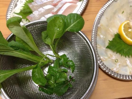 カルパッチョ レシピ かんたん IMG 7261