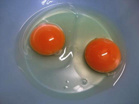 離乳食 赤ちゃん 生卵 半熟 いつから IMG 3964