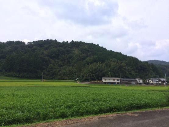 イモリ谷 ぱおぱお 場所IMG 4604