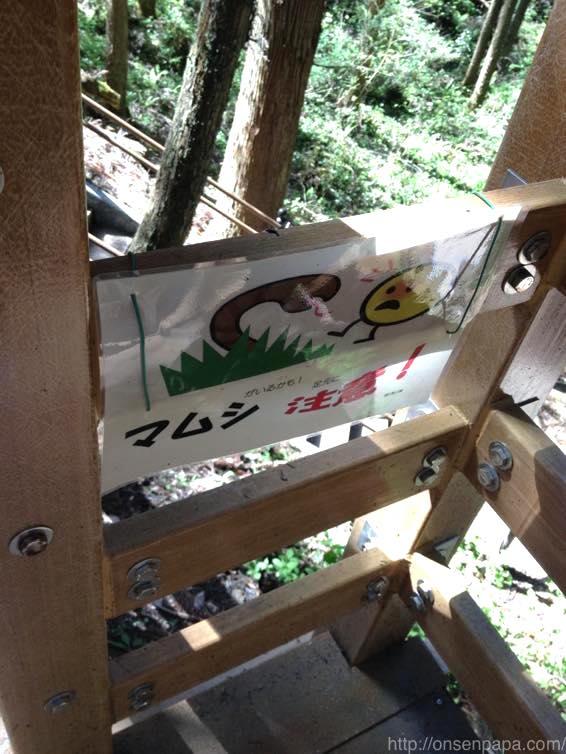 熊本 滝 小国 鍋ヶ滝IMG 4799