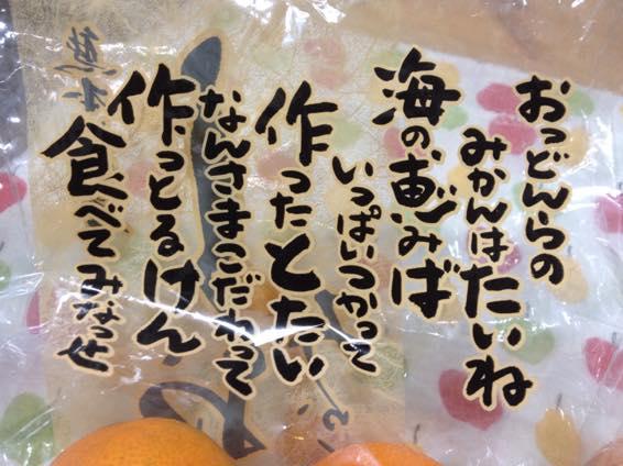 塩みかん 熊本 IMG 2143