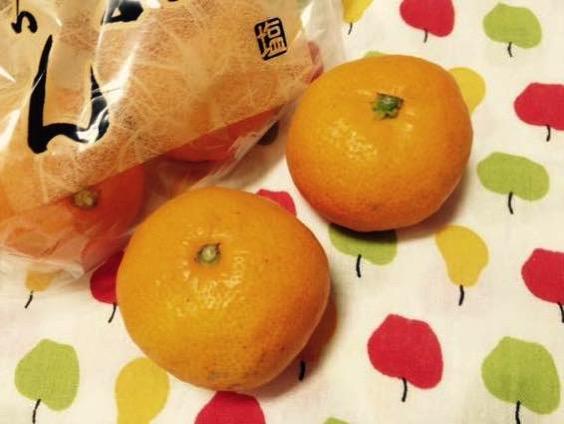 塩みかん 熊本 IMG 2128