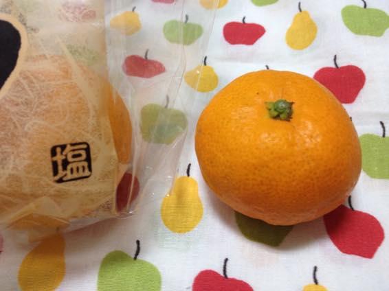 塩みかん 熊本 IMG 2141