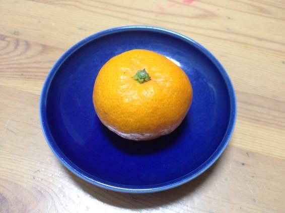 塩みかん 熊本 IMG 2147