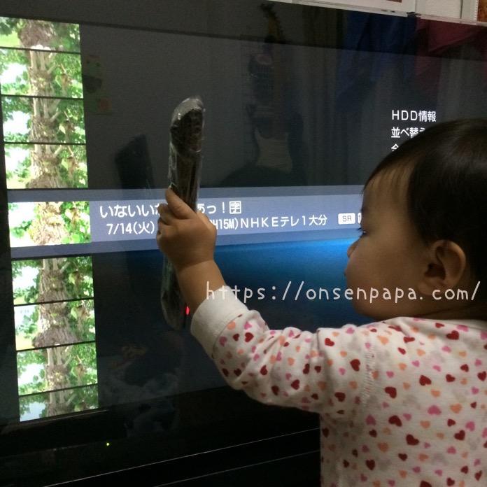 テレビガード 液晶 保護 赤ちゃん IMG 4972