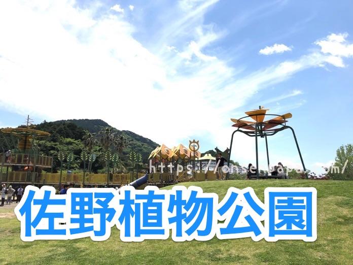 大分 佐野植物公園 IMG 1635