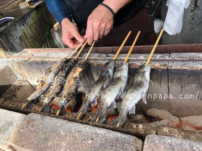 ヤマメ  川魚 何歳から  IMG 0747