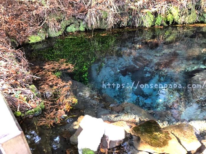 大分県 男池 画像 IMG 7594