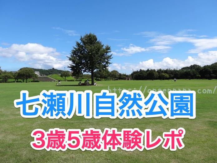 七瀬川自然公園 3歳 子連れ  DSC02864 2