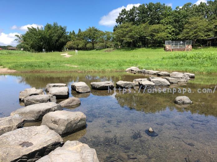 七瀬川自然公園 3歳 子連れ  IMG 5139