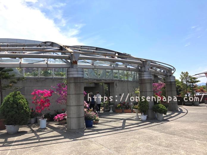 大分 佐野植物公園 IMG 1661